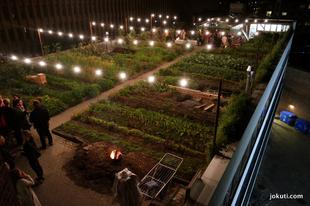 Zseniális éttermi koncepció: tetőkert a város közepén!