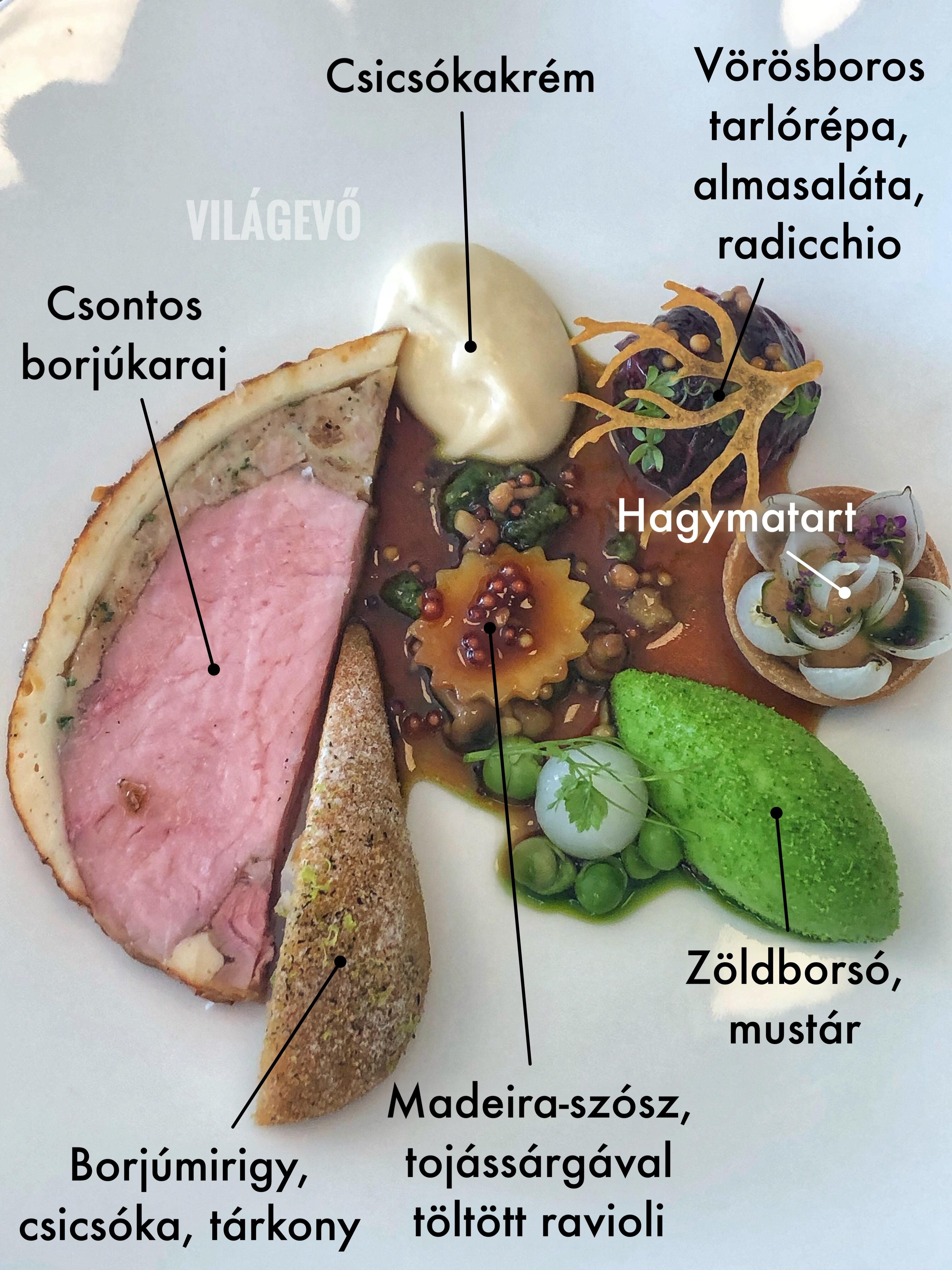 bocuse_d_or_borjukaraj_hustal_magyar_csapat_vilagevo_jokuti.JPG