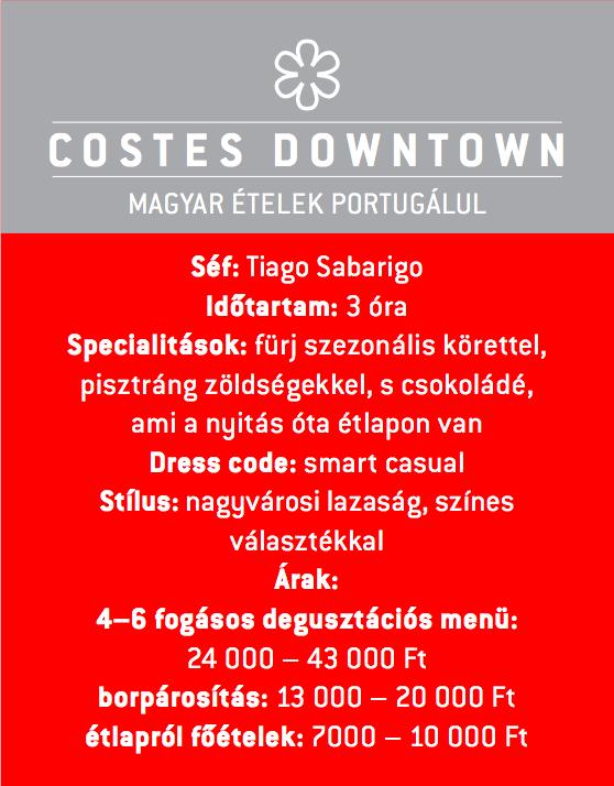 costes_downtown_jokuti_vilagevo_michelin_csillag_sabarigo_exclusive.png