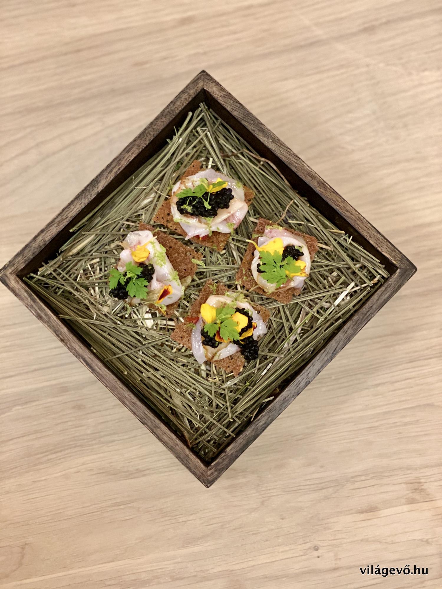 img_2594_salt_budapest_restaurant_2019_vilagevo_jokuti.jpg