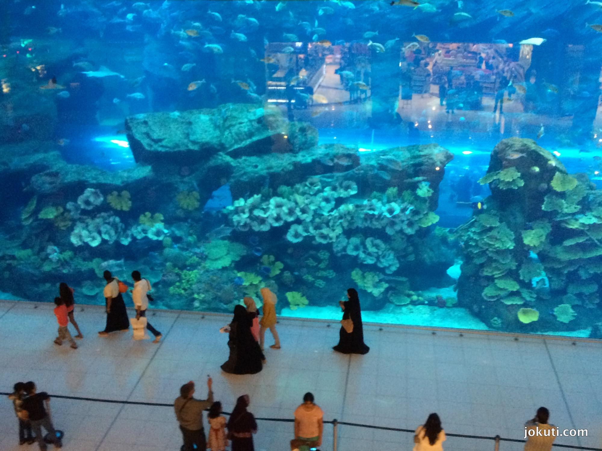 Az akvárium is nagy