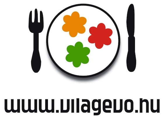 logo_Vilagevo_RGB_565_cropped.jpg