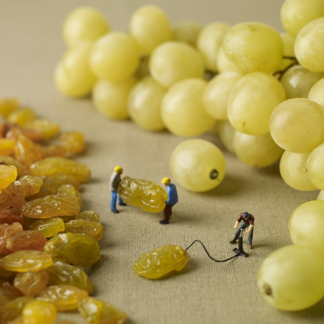 grape-inflated-660x660.jpg