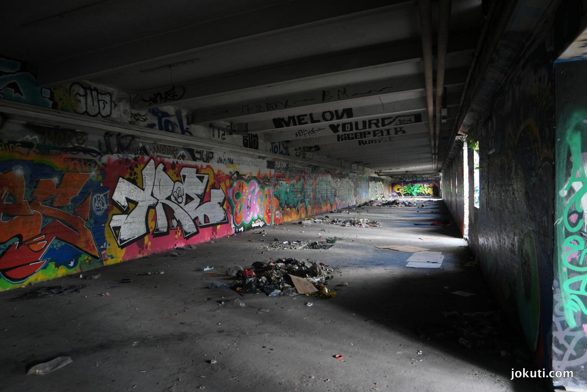 sam_7647.JPG
