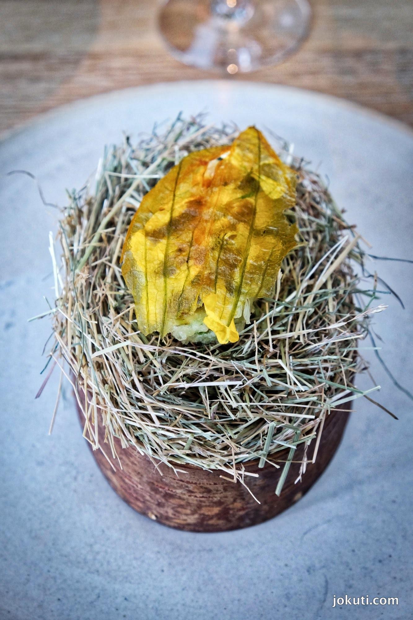 dscf6606_noma_copenhagen_vegeterian_plant_restaurant_redzepi_jokuti_vilagevo_l.jpg