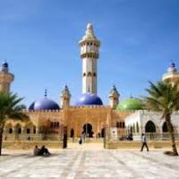 Skarlátszínű dal - Szenegál