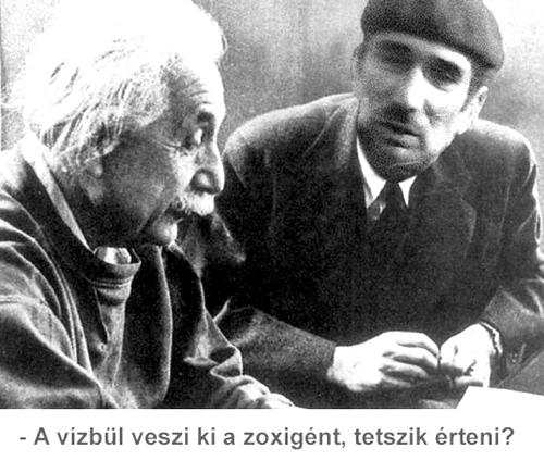 Szalacsi Einstein.jpg