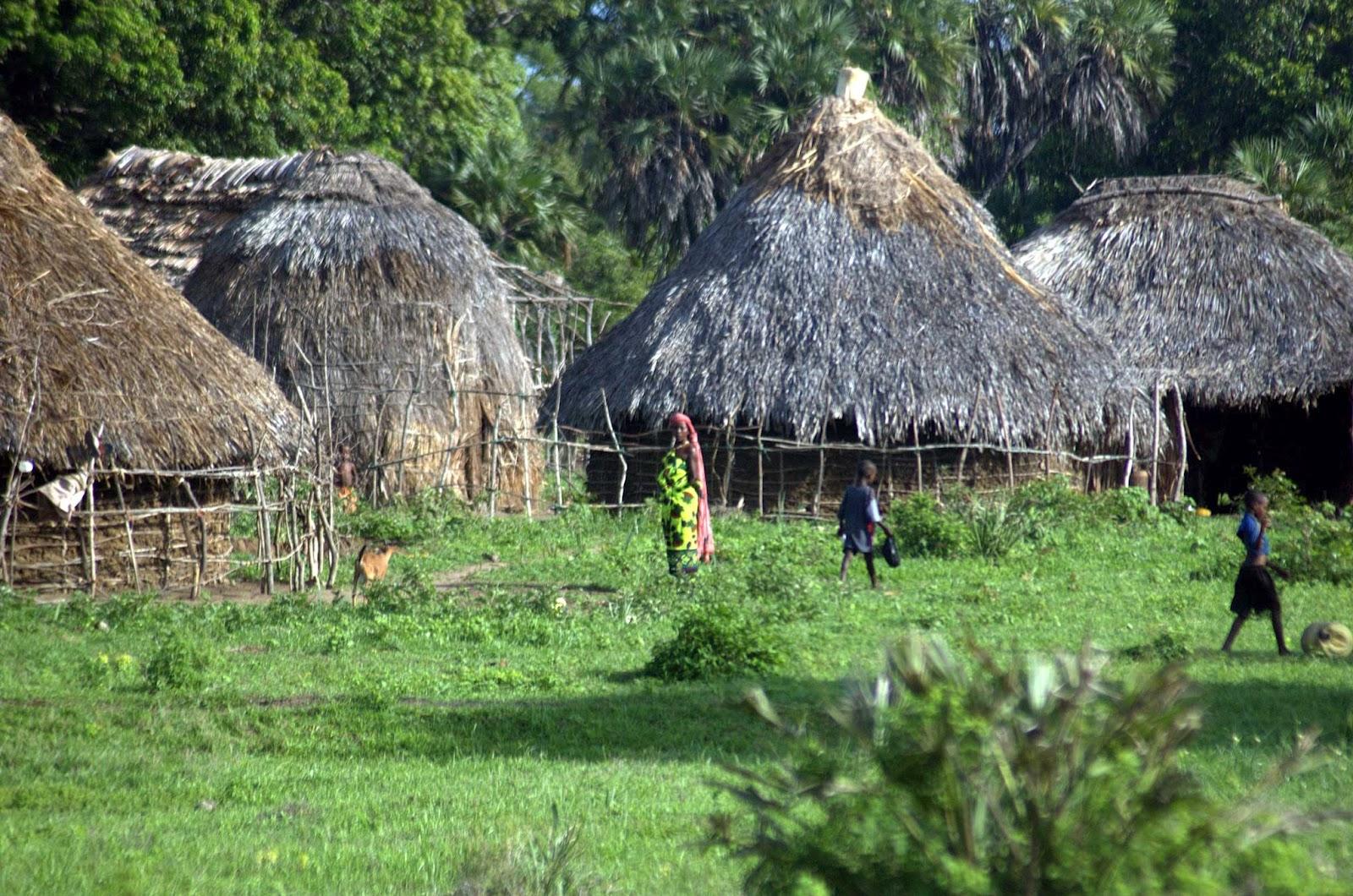 sacred-mijikenda-kaya-forests-kenya.jpg