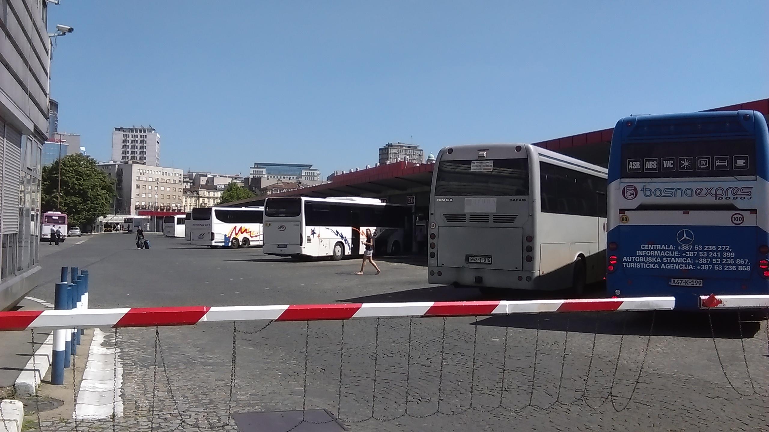 belgr_bus.jpg