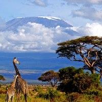 Hódítsd meg Afrika lemagasabb csúcsát - túra a Kilimandzsáróra