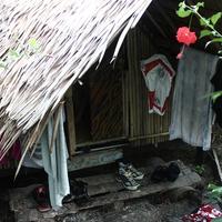 Malajziában jártunk - Borneó