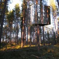 Különleges hotelek: Láthatatlan faház