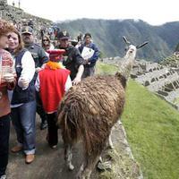 Újra várja a turistákat a Machu Picchu