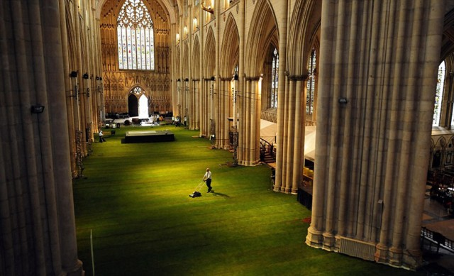 Cathedral-Interior-Covered-in-Grass3.jpg