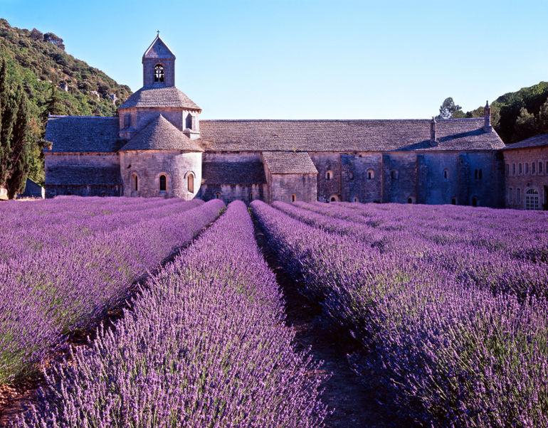 Provance Avignon.jpg