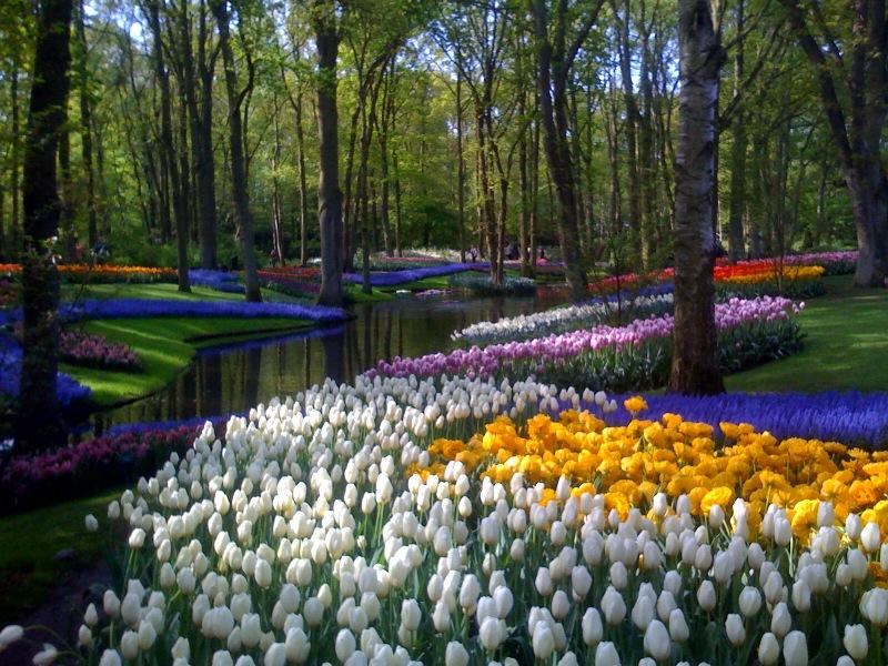 hollandia keukenhof utazás