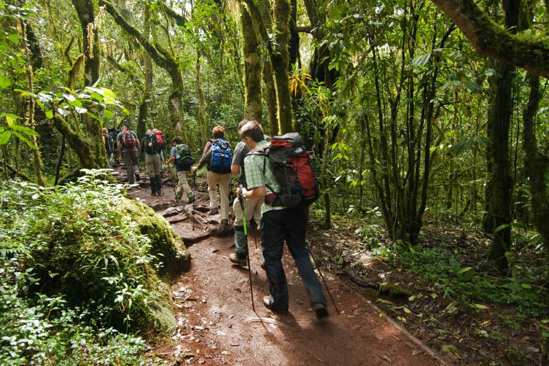 Kilimandzsáró5 (1).jpg