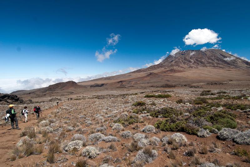 Kilimandzsáró8 (4).jpg