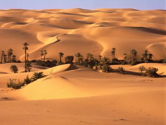 Desert_Oasis,_Libyan_Desert.jpg