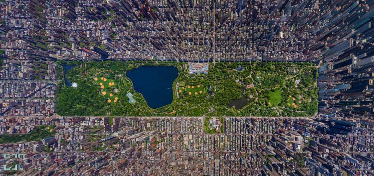 SergeySemenov-Central Park 3D.jpeg