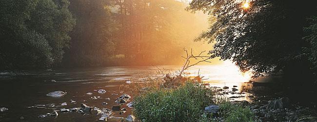nationalpark-thayatal--d.jpg