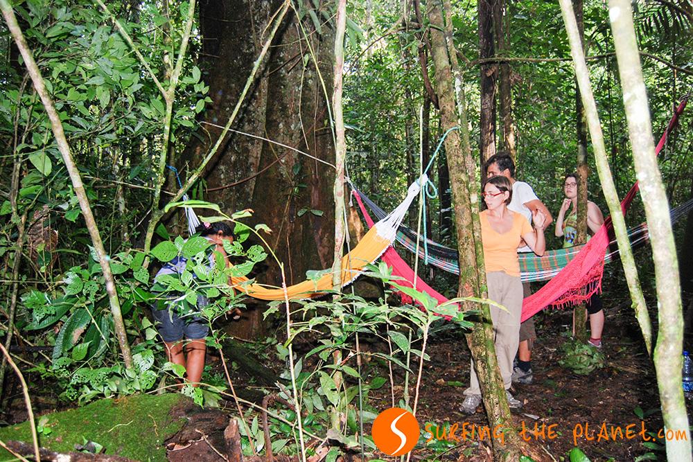 Kép 4 - Tábor a dzsungelben.jpg