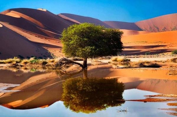 Sossusvlei,Namíb-sivatag, Namíbia.jpg