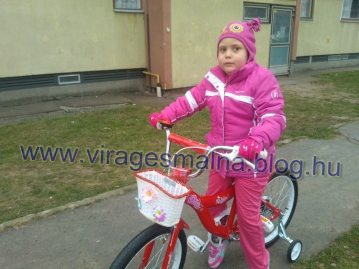 bringa_1364236383.jpg_718x538