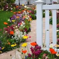 Tervezzünk kertet! Régi kertek átalakítása