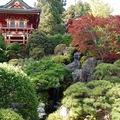 Japánkert nem Japánban