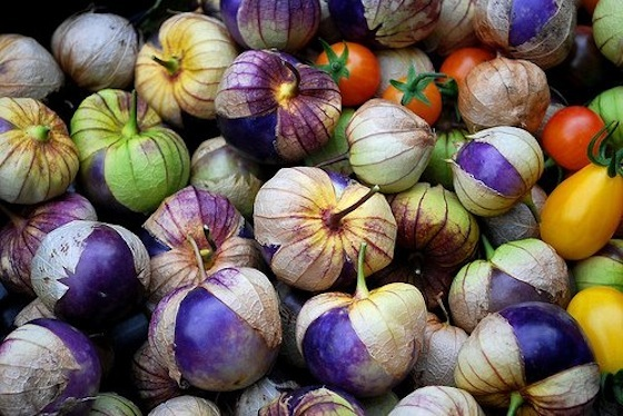 Tomatillo_purple+sárga koktélparadicsom.jpg