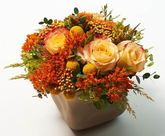 botanic_tuzott.jpg