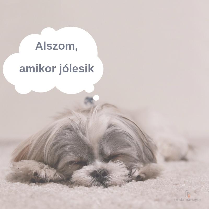 alszom_amikor_jolesik.jpg