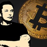 Ha Elon Musk bitcoint kér tőled…