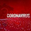 A WHO nevével is visszaélnek a koronavírus kiberbűnözői