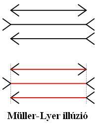 optikai-illuzio.JPG