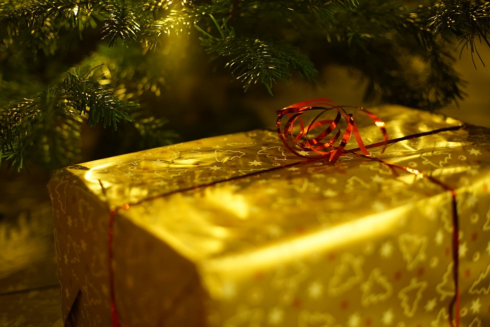 christmas-1786558_960_720.jpg