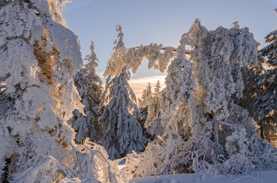 winter-1923414_960_720.jpg