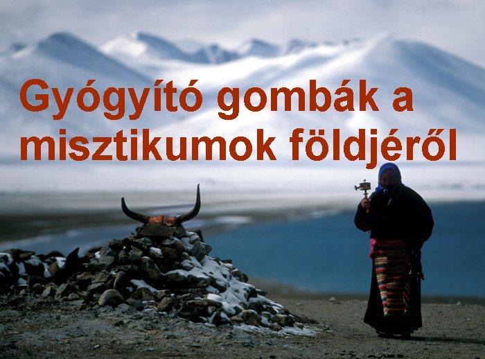 tibeti_nepvallas3_1.jpg