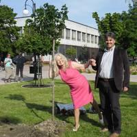 Adamis Anna fát ültetett Gútán