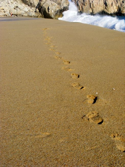 lábnyomok a homokban.jpg
