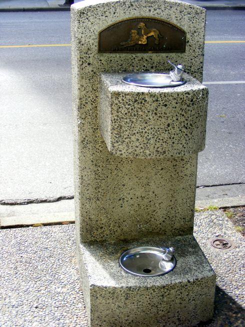 kutyakompatibilis ivókút.jpg