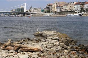 Rekordokat dönt a Duna alacsony vízállása!