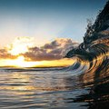 Az óceán megszállott fotósa
