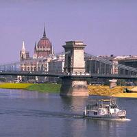 Búza és traktorok a Duna-parton
