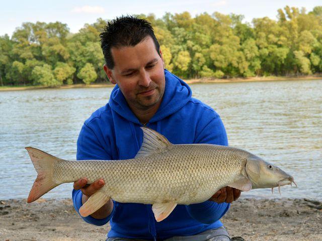 A halak légzése – egy horgász gondolatai 7. rész
