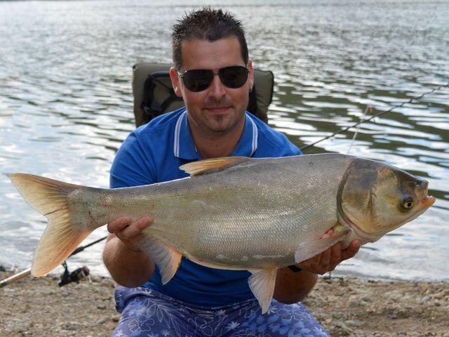 Filléres horgászatok – Busa horgászat feederbottal