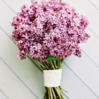 A virágok jelentése