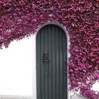 nemTUCAT: a notting hill-i kék ajtó itthon