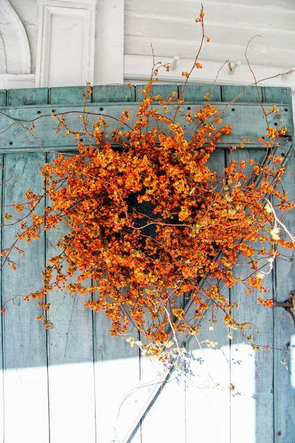 nemTUCAT - 6 + 1 egyszerű dekoráció őszre
